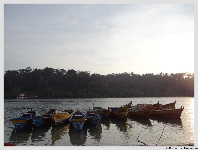 /photos/andamans_c/fishing_boats.JPG