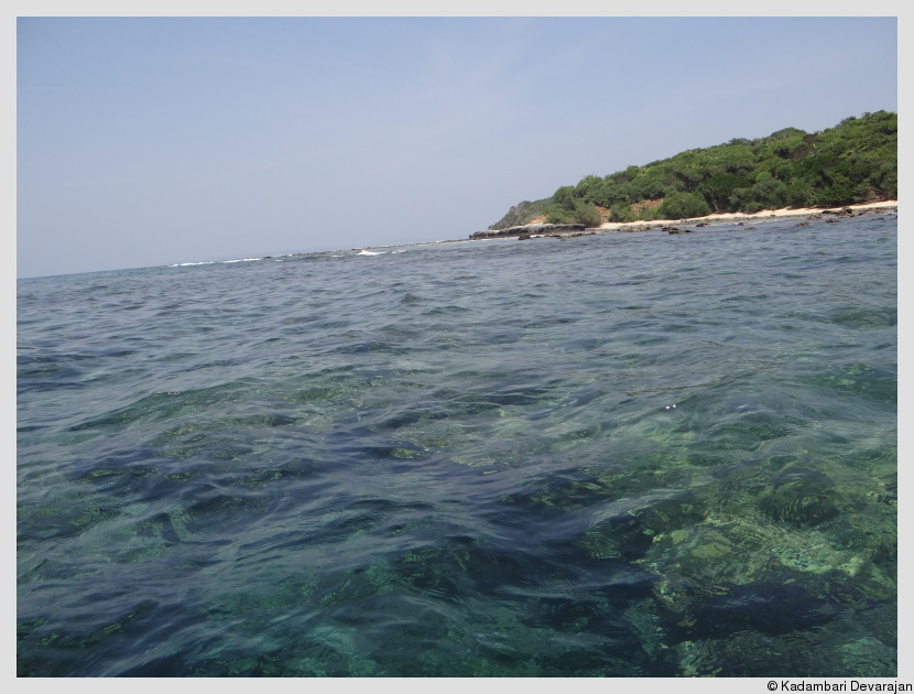 /photos/andamans_c/fringe_reef1.JPG
